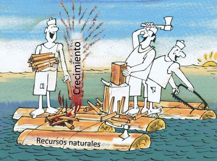 leña recursos crecimiento